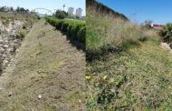 Obres i Serveis neteja els talussos del riuCervolde Vinaròs