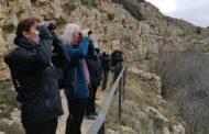 Ares del Maestrat acull una jornada d'observació d'aus amb un gran nombre d'albiraments