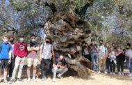 Estudiants americans descobreixen el patrimoni natural i històric de Canet lo Roig