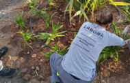 El taller Et Formem de Benicarló per a persones amb dificultats d'inserció laboral es prorroga un any