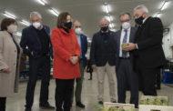 La Carxofa de Benicarló rebrà 57.000 euros de la Diputació per a canviar els plançons afectats pel 'verticillium'