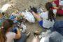 La Diputació de Tarragona se suma a la iniciativa europea 'Let'sCleanUp'