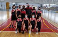 Bona collita de victòries dels equips del Club Bàsquet Vinaròs