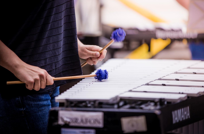 La Diputació concedeix 184 beques per a l'alumnat dels seus centres d'ensenyaments musicals i artístics