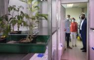 Diputació i UJI impulsen un projecte per a combatre plagues i malalties en cultius mediterranis