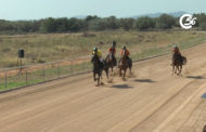 Curses de cavalls de Festes Majors 2021 de La Sénia 28-08-2021