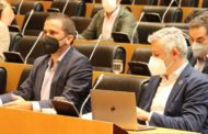Renau destaca el treball del Govern per baixar la llum mentre el PP vota en contra de les mesures