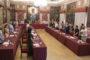 Castell eleva al Ple una moció per a demanar actuacions per a controlar la població de senglars