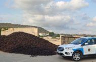La Policia Autonòmica incrementa els dispositius de control en magatzems de garrofa i ametla