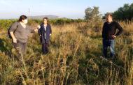 S'adjudica l'excavació arqueològica i l'estudi del jaciment del Mas de Fabra de Benicarló