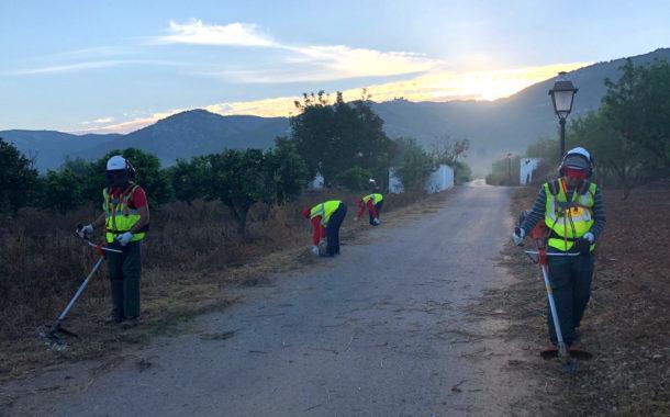 La Brigada Forestal EMERGE inicia els treballs a Santa Magdalena